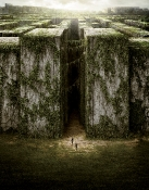 the_maze_runner_20141017_1419257664.jpg